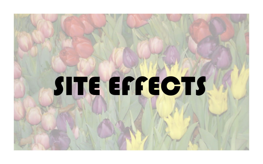 Site Effects 2020
